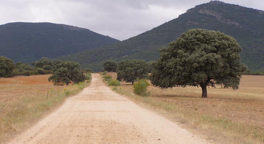 casa rural dona jara alrededores exterior campo - Doña Jara